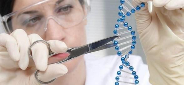 la-ingenieria-genetica